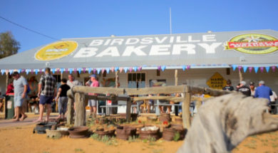 Campr-thumbnail-SNACKSTOP-birdsvillebakery-SOCIALWEB