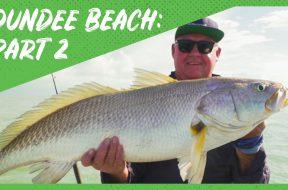 Campr-thumbnail-Dundee-Beach-P2-websocial