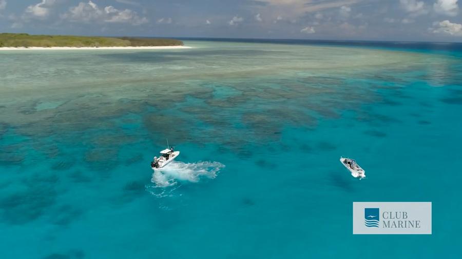 great barrier reef club marine