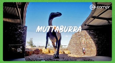 Outback Queensland Muttaburra
